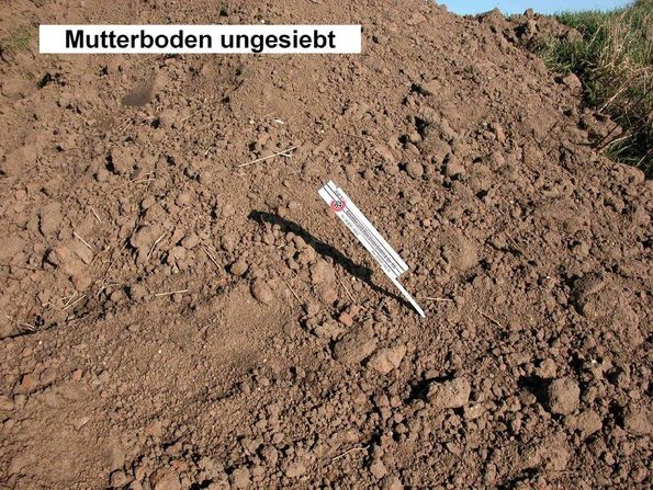 Mutterboden ungesiebt